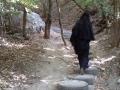 35 Тропа в монастырь